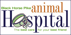 Black Horse Pike Animal Hospital