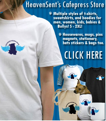 Bulldog Rescue Shirts!