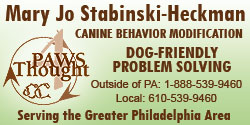 Paws 4 Thought